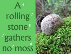 134507935395013232677_rolling-stone-300x229.png.jpeg