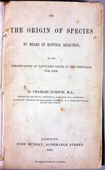 185901.jpg